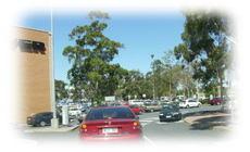 Marion_car_parking