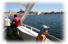 Dolphin_cruise_2