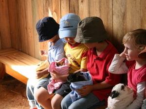 Baby_animal_nursery_1